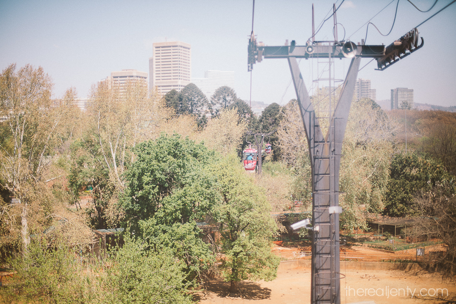 Cable cars at the Pretoria Zoo